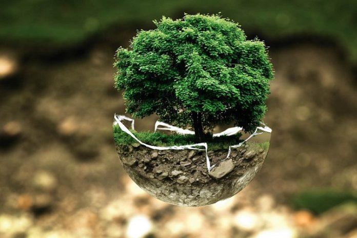 inżynieria środowiska – praca przyszłości